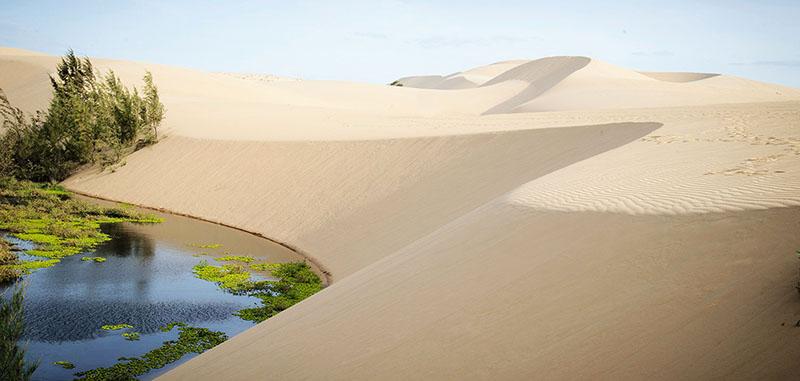 Đồi cát trắng Mũi Né