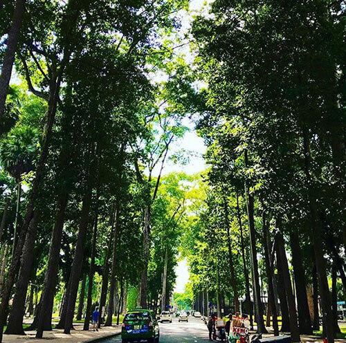 công viên Tao Đàn Quận 1v